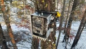 Southern Interior Mule Deer Project: Winter Update